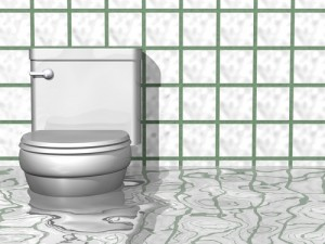 Bathroom Flooding Situations That Could Lead To Extensive Water Damage Rytech