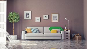 prevent mold growth in a flooded home