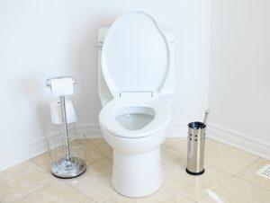 toilet overflow water damage