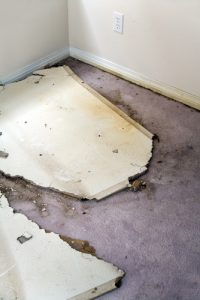 flood damaged carpet