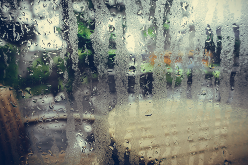 How to Manage Humidity in Your Home this Summer | Rytech