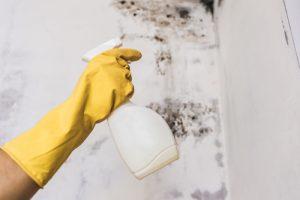 mildew removal