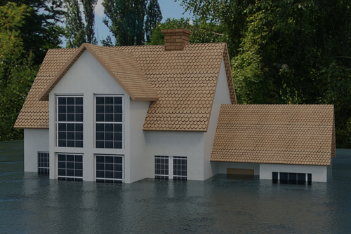 How To Deal With A Flooded Crawl Space Rytech