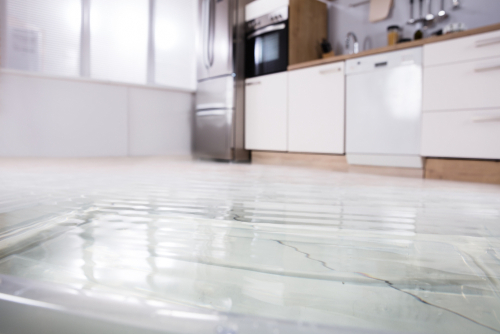 What Is A Water Alarm System And How Can It Help Me? | Rytech
