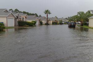 flood contamination