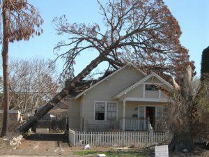 fall storm damage