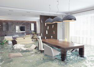 home flood cleanup