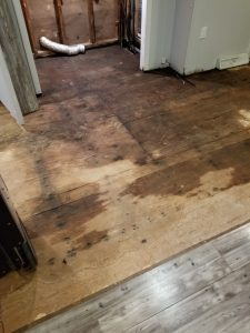 replace a subfloor