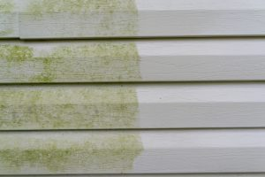 water damage to siding