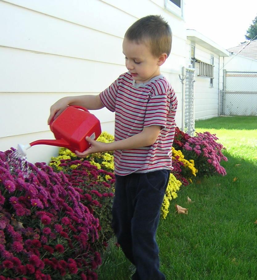 Best Chores For Kids By Age Group Zerorez Atlanta