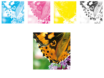 Printing Lingo: What is 4-Color Process Printing? | Formax