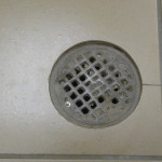 Floor drains are common in showers.