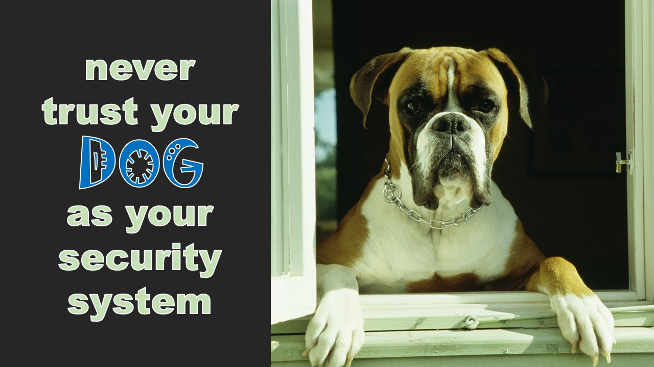 Never trust your dog as a security system emc security for Emc security systems